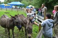 Des enfants caressent les ânes de la Ferme pour enfants